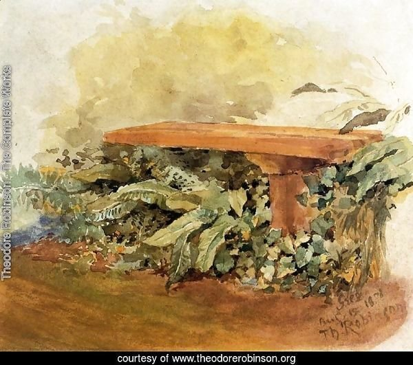 Garden Bench With Ferns